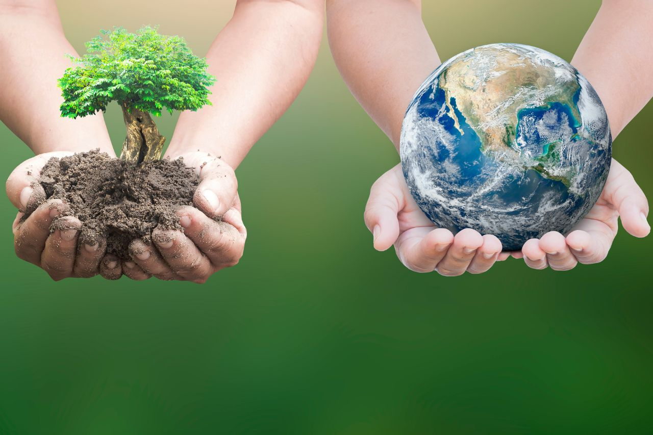 Striving For A More Sustainable Future_result